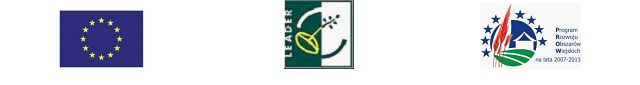 Leader - logotypy góra.jpeg