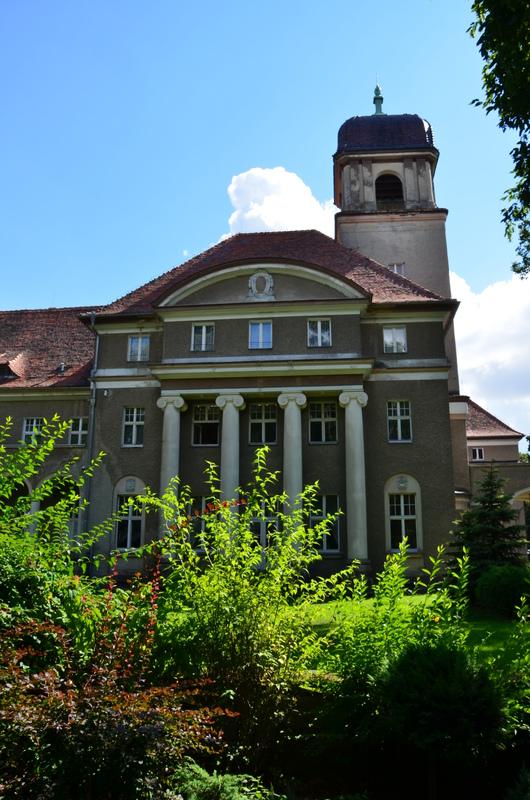Pałac w Łosiowie.jpeg