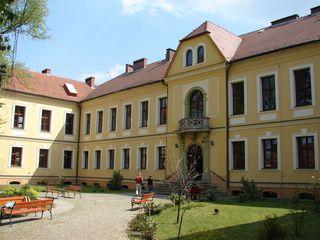Pałac - Gimnazjum w Lewinie Brzeskim.jpeg