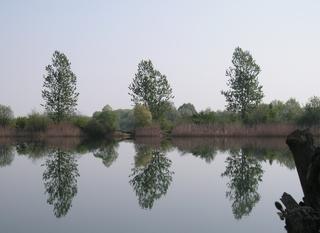 Zbiorniki wodne w Kantorowicach - Ptakowicach.jpeg