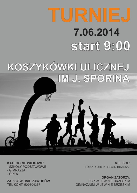 Turniej Sporina 2014.jpeg