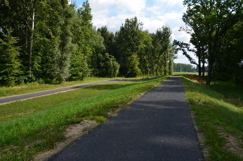 ścieżki pieszo-rowerowe przy Nysie Kłodzkiej w LB.jpeg