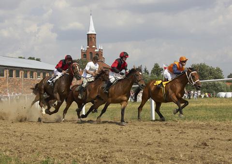 Wyścigi konne w Stajni Koni Sportowych w Skorogoszczy.jpeg