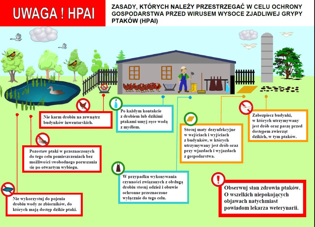 Zasady, których należy przestrzegać celem ochrony gospodarstwa przed wirusem HPAI.png