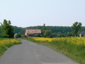 Spójność z krajobrazem kulturowym i przyrodniczym - widok na posesję i jej otoczenie