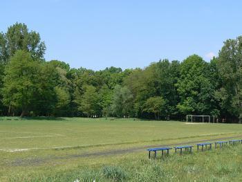 Estetyka i dbałość o zachowanie i kształtowanie krajobrazu oraz ładu przestrzennego i architektonicznego-boisko sportowe
