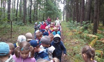 Przedszkolaki z Przedszkola nr 1 w Lewinie Brzeskim odwiedzają las