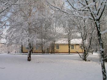 zima 02.jpeg