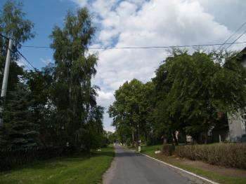 Idąc główną ulicą Jasionki...