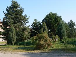 Leśniczówka - wieś