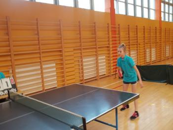 Galeria Tenisiści łosiów