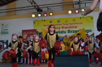 Galeria Turniej Powiatu Brzeskiego 2016