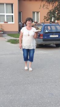 Galeria Szegvar 2016