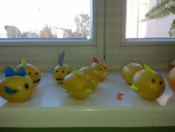Galeria dzień gruszki i cytryny