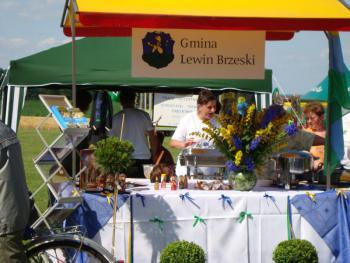 Święto Powiatu Brzeskiego