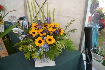 Galeria Wiosna kwiatów 2018