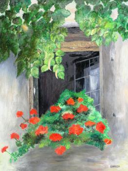 Pelargonie - Urszula Kabza