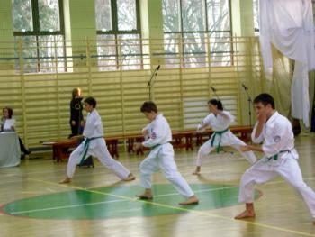 Otwarcie sali gimnastycznej - pokaz wschodnich sztuk walki