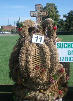 korona nr 11 z sołectwa Suchodaniec gmina Izbicko