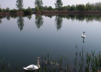 Sołectwo Kantorowice - jezioro