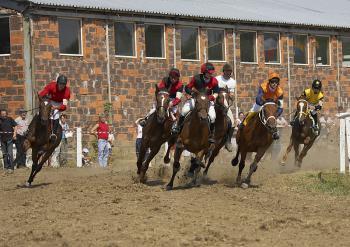 Wyścigi konne w Stajni Koni Sportowych w Skorogoszczy
