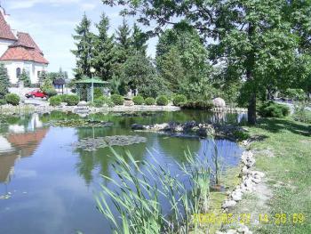 oczko wodne w Łosiowie 6